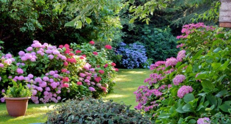 RuralWaterDirect-96263-Designing-Large-Garden-image1